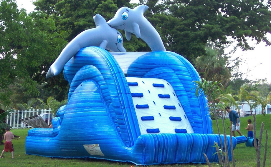Dolphin-Waterslide-Big-920x568