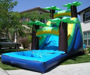 palm tree water slide rental